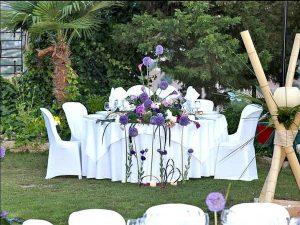 mi gran boda